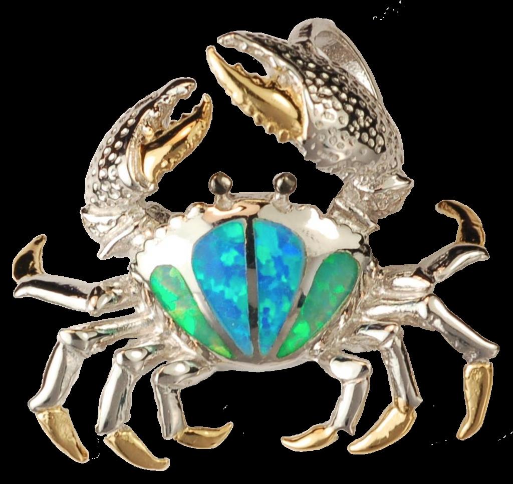 Fan Crab - Small